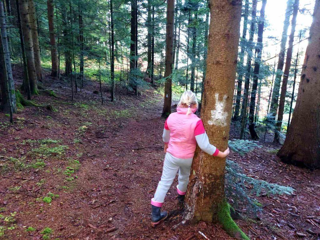 Moč dreves
